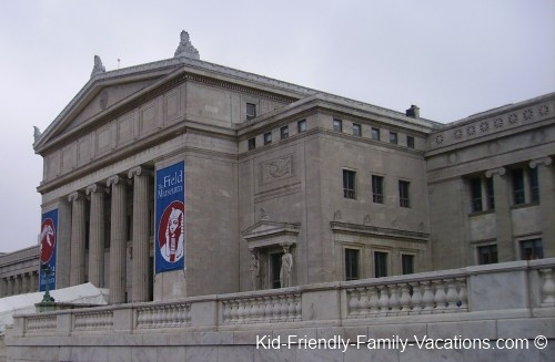 things to do in chicago field museum