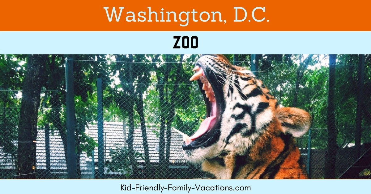 The Washington DC Zoo is the National Zoo of the United States of America.  Admission is free as a part of the Smithsonian